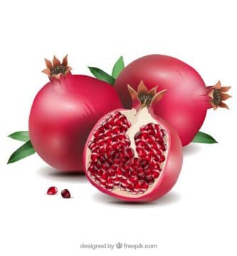 of pomegranate
