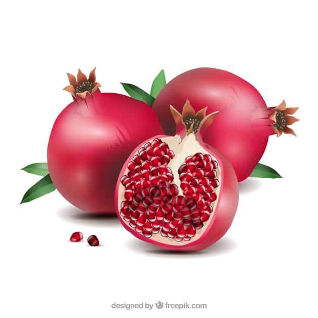 of pomegranate