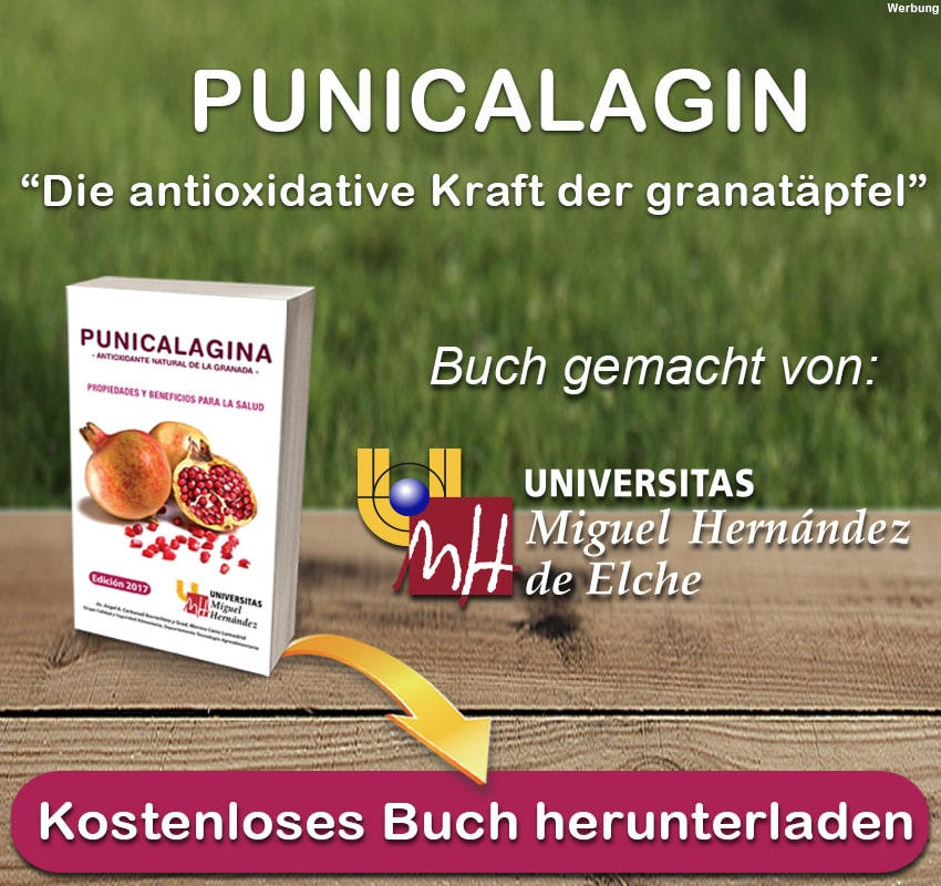 PUNICALAGIN BUCH