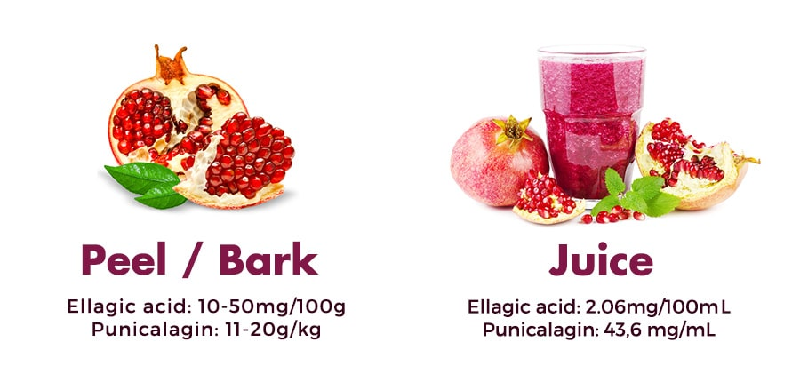 Chemical composition of pomegranate