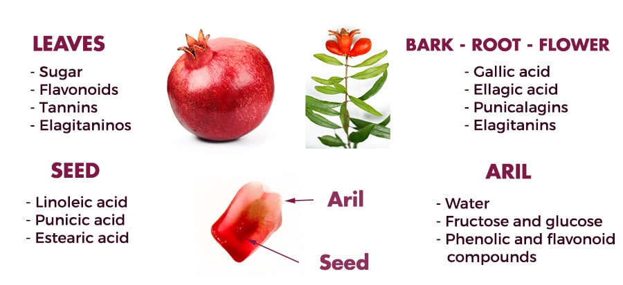 Pomegranate as a functional food