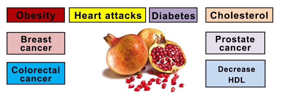 Pomegranate as a prevention of different diseases