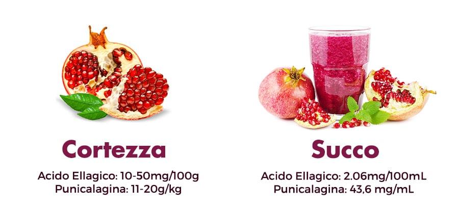 acido-ellagico-punicalagina